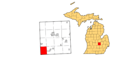 Location of Woodhull Township, Michigan