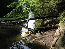 Mianus River Gorge As It Approaches Samual J. Bargh Reservoir.JPG