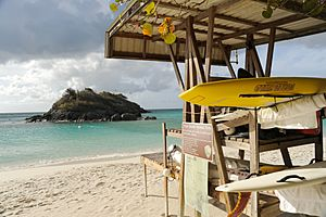 St John Trunk Bay 7