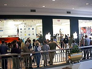Line at the opening of first Apple Store in America