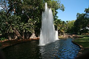 Fountain in the George Brown Darwin Botanic Gardens