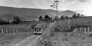 Queensland State Archives 351 Looking from Witta Road towards Conondale c 1931