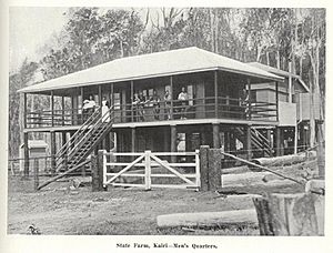 StateLibQld 1 240083 Men's quarters at the Kairi State Farm, south west of Cairns