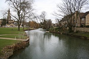 River Welland - geograph.org.uk - 160240