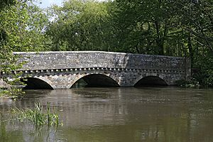 West Street Bridge, Ringwood - geograph.org.uk - 173981