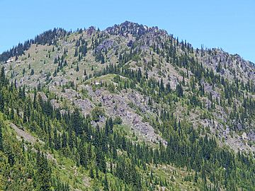 Chinook Peak from Chinook Pass.jpg