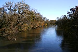 French broad river 9228