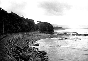 A bit of the Illawarra Coast from The Powerhouse Museum