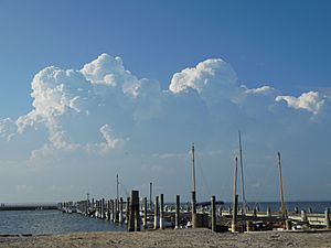 Cumulus congestus over Long Island