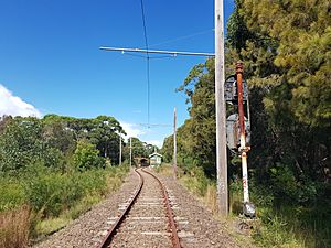 2020-04-19 Royal National Park railway line, Sydney