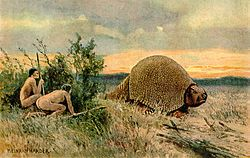 Glyptodon old drawing