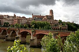 Albi featuring the Sainte-Cécile cathedral and the Pont Vieux (old bridge) over the river Tarn.