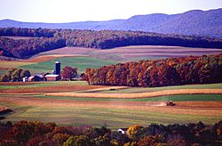 Farming near Klingerstown, Pennsylvania