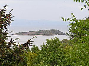 Rough Island from Tornat Wood - geograph.org.uk - 1305616