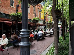 Stone Street Gardens in Downtown Dallas, 04-01-11