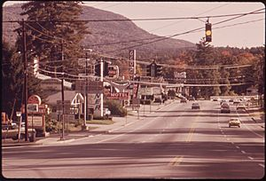 ENTRANCE TO LAKE GEORGE VILLAGE, IN THE ADIRONDACK FOREST PRESERVE IS CLUTTERED WITH POWER LINES AND SIGNS - NARA - 554709