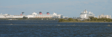 Port canaveral cruise ships 01