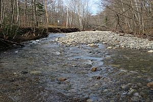 Oliverian Brook Glencliff NH.jpg
