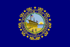 Flag of New Hampshire (1909-1931)