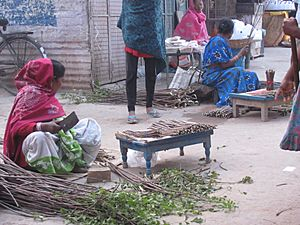 Neem Twig sellers