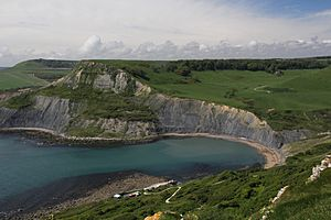 Chapman's Pool from Emmett's Hill.JPG