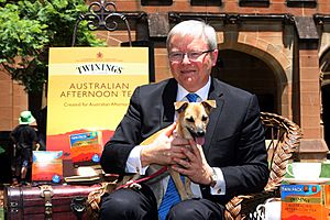 Kevin Rudd (Pic 4)