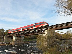 O Train over Rideau by Wilder
