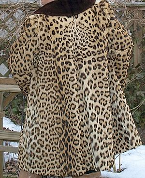 Leopard fur skin coat