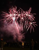Spectators watching fireworks display from Flickr user KSDigital