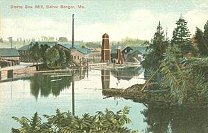 Sterns Sawmill, below Bangor, ME