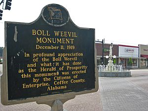Boll Weevil Monument Alabama Historical Marker