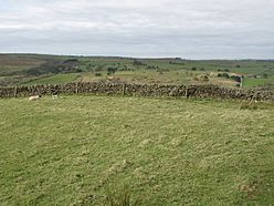 (The site of) Milecastle 46 (Carvoran) - geograph.org.uk - 1374335.jpg