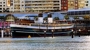 S.S. South Steyne. Darling Harbour. (21217410002)
