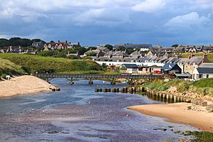 View of Cruden Bay from the estuary.
