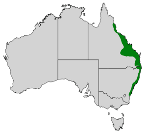 Map of Australia showing highlighted range covering eastern Queensland and New South Wales