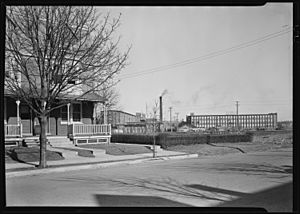 Lancaster, Pennsylvania - Housing. Stehli mills and houses in row inhabited by Stehli workers - rental $30.00 per month. - NARA - 518453