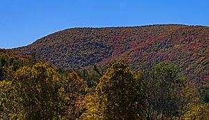 A general level mountain summit, covered in woods that show autumn color, seen from some distance below with some trees in the foreground, beneath a clear blue sky.