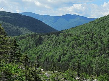 Mount Hancock NH June 2019.jpg