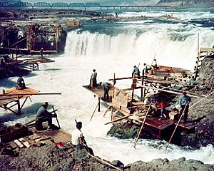 Corps-engineers-archives celilo falls color