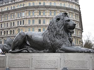 Lion-nelson-column-trafalgar-london-uk