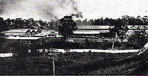 Meadowbank Manufacturing Company workshops 1922