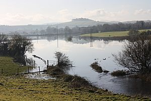 Flooded fields, County Down, November 2010 (01)
