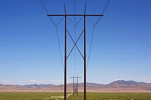 A342, Crescent Valley, Nevada, USA, utility poles, 2011