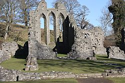 Inch Abbey, Downpatrick, March 2010 (03)