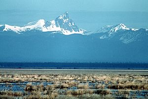 Lower Klamath NWR marsh and mountains