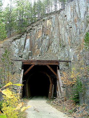 Mickelson Trail Tunnel