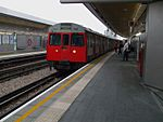 C Stock at Wood Lane.JPG