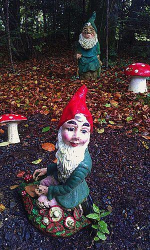 Gnome In Garden: Garden Gnome Facts For Kids