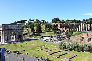 Palatine Hill from Colosseum 2011 1