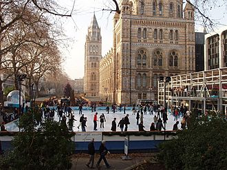 Busy ice rink at the Natural History Museum - geograph.org.uk - 637143